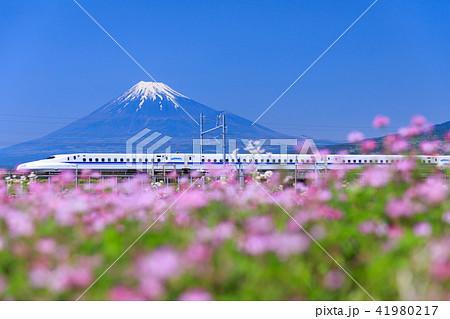 静岡_富士山と新幹線 41980217