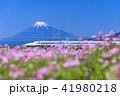 富士山 新幹線 静岡の写真 41980218