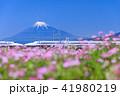 富士山 新幹線 静岡の写真 41980219