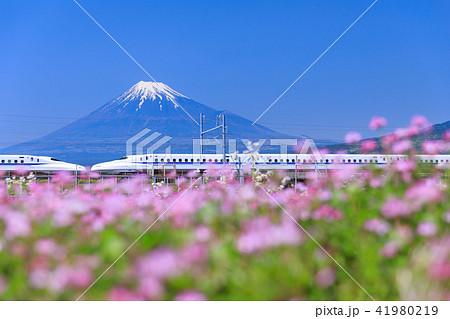 静岡_富士山と新幹線 41980219