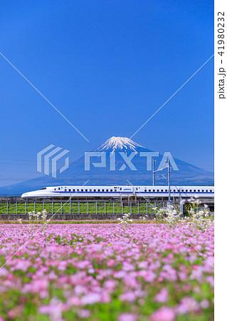 静岡_富士山と新幹線 41980232