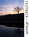 シルエット 夕暮れの自転車 青紫 41981231