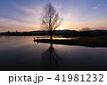 シルエット 夕暮れ 水辺の木と女の子 41981232