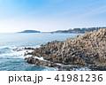 東尋坊 雄島を望む 41981236