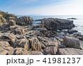 東尋坊 柱状節理 海の写真 41981237