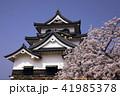 4月 桜咲く彦根城天守閣 41985378