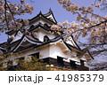 4月 桜咲く彦根城天守閣 41985379