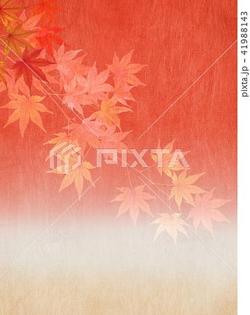 和-背景-秋-紅葉 41988143