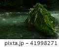 奥入瀬渓流 渓流 新緑の写真 41998271
