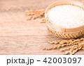 水田 米 稲の写真 42003097