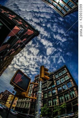 ニューヨーク・マンハッタンの街並み 42003399