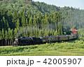 SL 鉄道 蒸気機関車の写真 42005907
