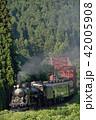 SL 鉄道 蒸気機関車の写真 42005908
