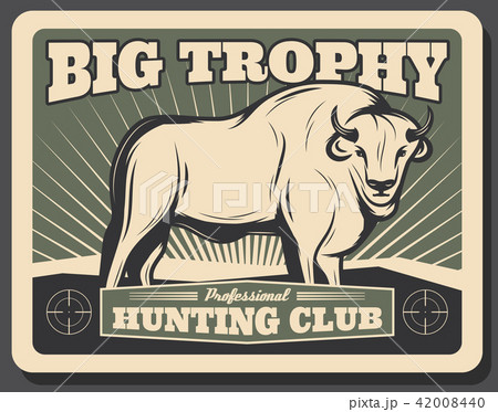 Vector buffalo retro poster for hunting club 42008440