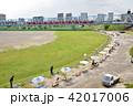 多摩川 六郷橋 緑地の写真 42017006