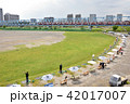 多摩川 六郷橋 緑地の写真 42017007