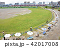 多摩川 六郷橋 緑地の写真 42017008