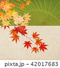 和-背景-秋-紅葉-番傘 42017683