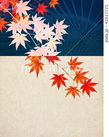 和-背景-秋-紅葉-番傘 42017725