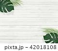 背景-夏-南国-植物-白壁 42018108