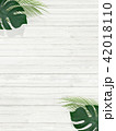 背景-夏-南国-植物-白壁 42018110
