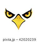 ベクトル 鳥 タカのイラスト 42020239