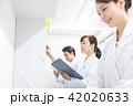 薬局 調剤薬局 薬剤師の写真 42020633