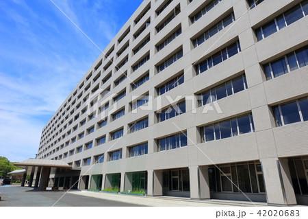 福岡県庁 福岡市東区の街並み 42020683