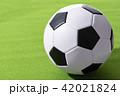 サッカーボール ボール サッカーの写真 42021824