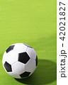 サッカーボール ボール サッカーの写真 42021827
