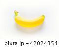 一本のバナナ 白バック 42024354