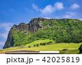 城山日出峰 世界遺産 風景の写真 42025819