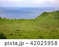 城山日出峰 世界遺産 風景の写真 42025958