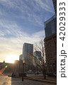 丸ノ内 ビル 都会の写真 42029333