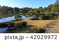 庭園 風景 清澄庭園の写真 42029972