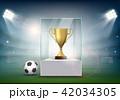 ボール 球 サッカーのイラスト 42034305