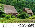 白川郷 合掌造り 白川村の写真 42034665