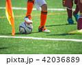 サッカー 少年サッカー 男の子の写真 42036889