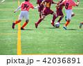 少年サッカー試合風景 42036891