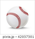 Realistic Detailed 3d Baseball Leather Ball. Vector 42037301