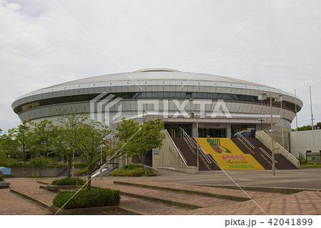 神戸総合運動公園・グリーンアリーナ神戸/兵庫県神戸市須磨区緑台 42041899