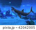 サメ シャーク 鮫のイラスト 42042005