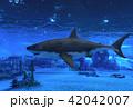 サメ シャーク 鮫のイラスト 42042007