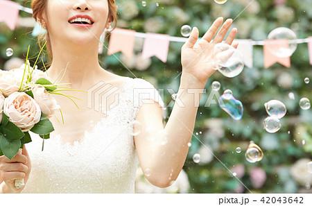 女性 ブライダルイメージ 42043642