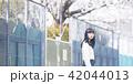 女性 春の散歩 42044013