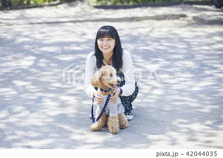 女性 犬の散歩 42044035