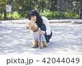 人物 女性 アジア人の写真 42044049