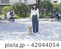 女性 散歩 公園の写真 42044054