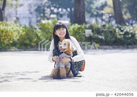女性 犬の散歩 42044056
