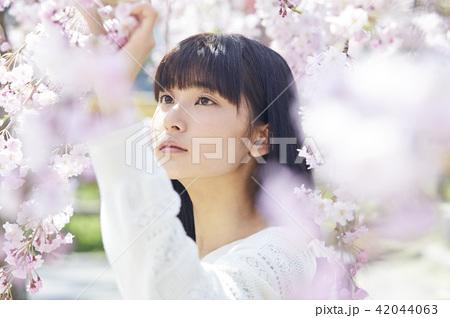 桜 ポートレート 42044063